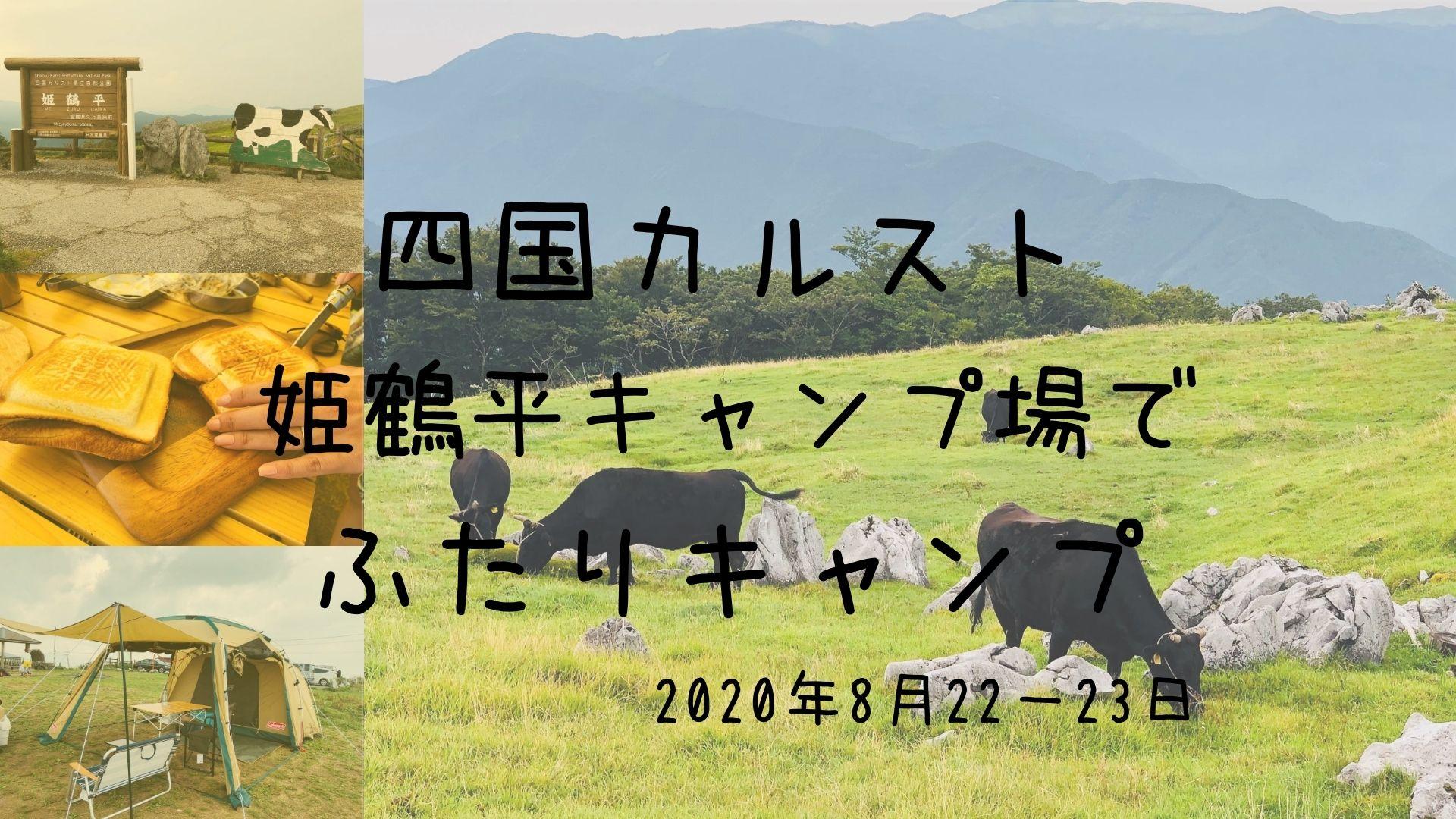 shikokukarusuto camp