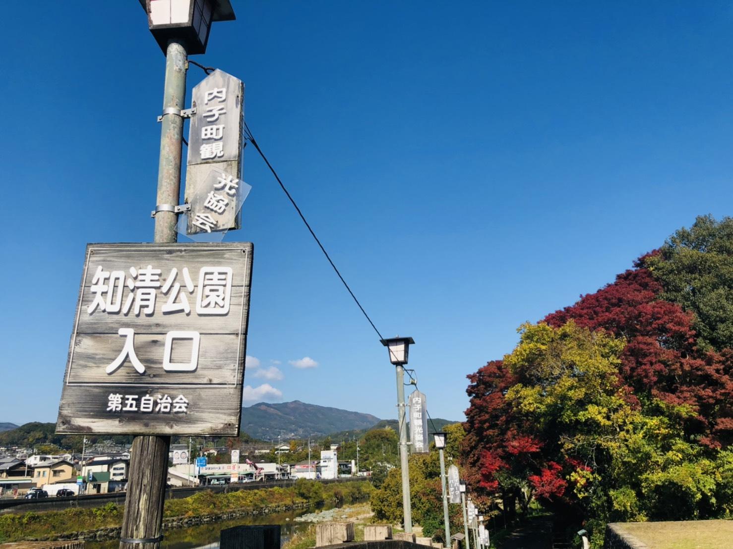 chisei park (27)